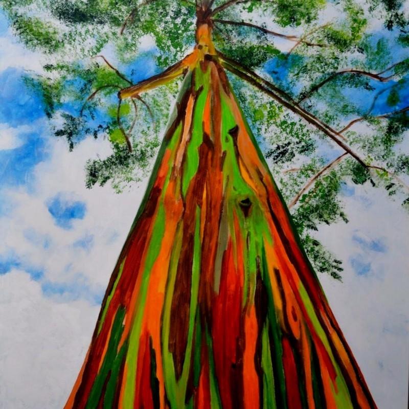 Graines Eucalyptus arc-en-ciel 3.5 - 1