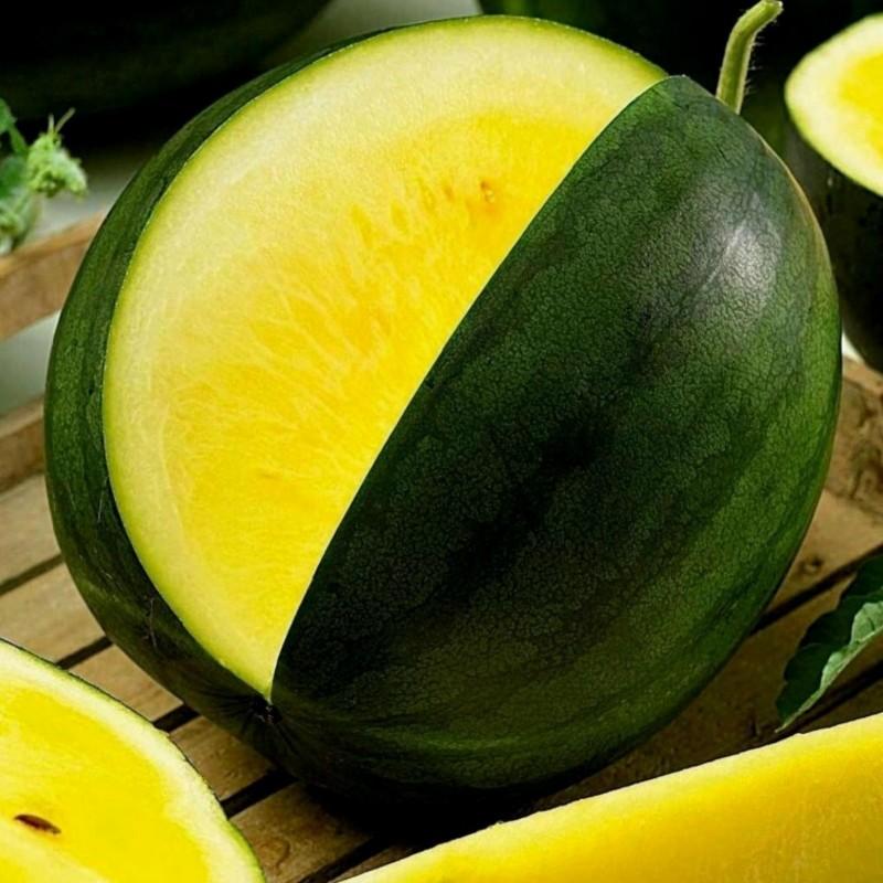 JANOSIK Gelbe Wassermelone Samen 1.95 - 1