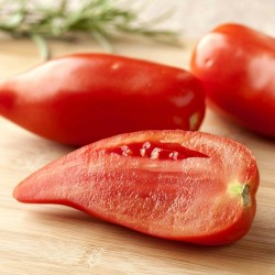 Rare Tomato ANDINE CORNUE...