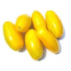 Graines de Tomate Banana Legs 1.85 - 5
