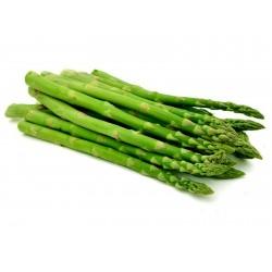 Spargel Samen - Asparagus officinalis 1.65 - 2