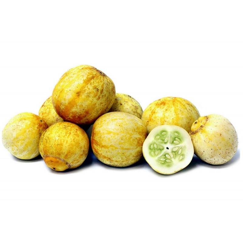 Semillas De Pepino De Limón 1.95 - 1