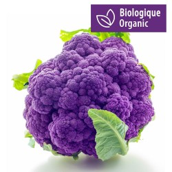Purple Cauliflower Seeds 2.75 - 1