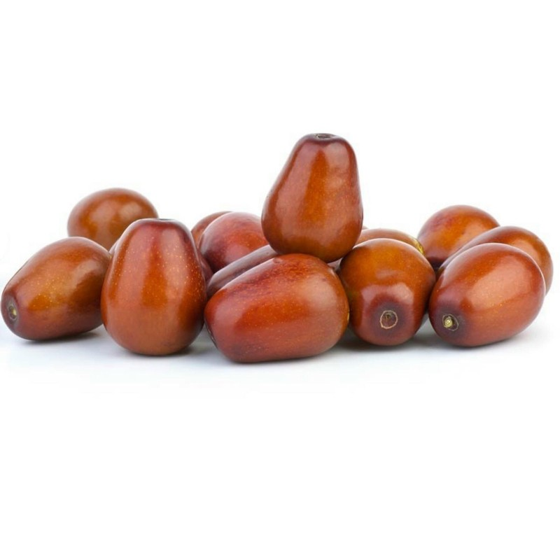 Jujube Chinesische Dattel Ziziphus jujuba Samen 3.5 - 1