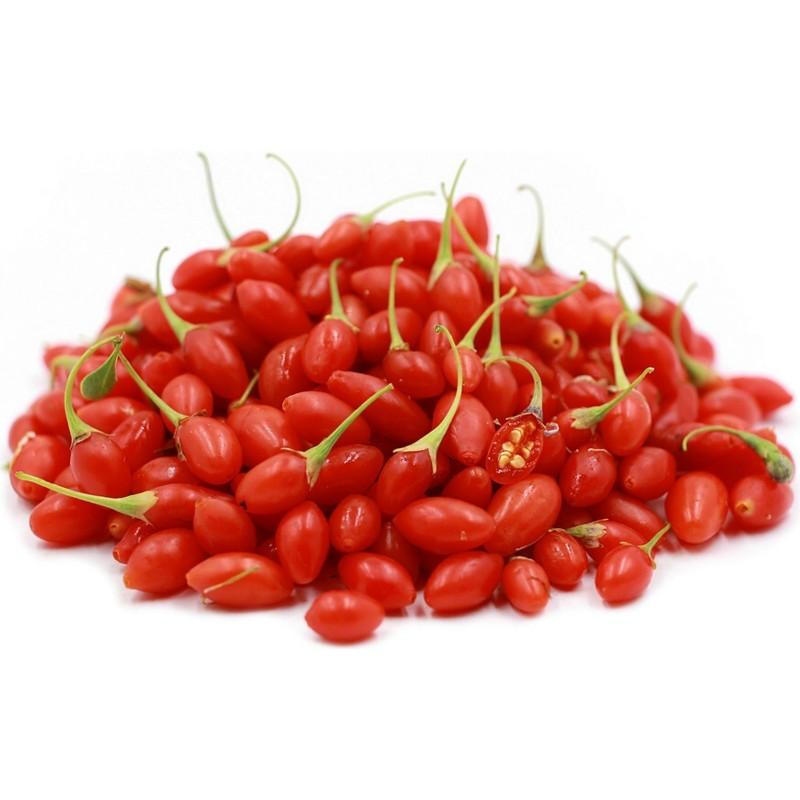 Graines Goji Berry (Lycium chinense) Rusticité: -45°C 1.55 - 1