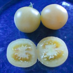 White Cherry - Tomato seeds 1.95 - 2