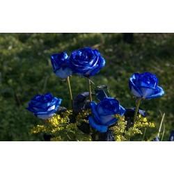 Sementes de Rosa Azul - Blue