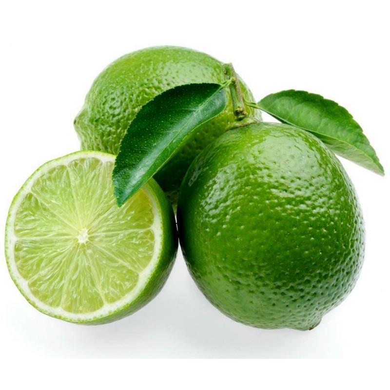 Tahitilime Frön (Citrus ×latifolia)  - 3