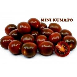 Kumato Mini Schwarzkirschtomate Samen  - 2
