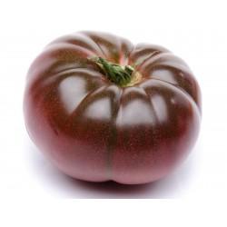 Cherokee Purple Tomatfrön Seeds Gallery - 4