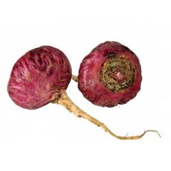 Crvena Maca - Maka Seme (Lepidium meyenii)  - 3
