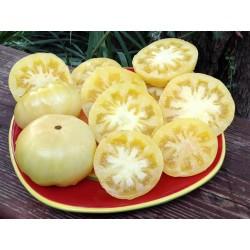 Semillas de tomate Blanco Asombro (White Wonder) Seeds Gallery - 3