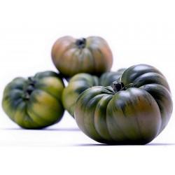 RAF Tomato Seeds  - 7
