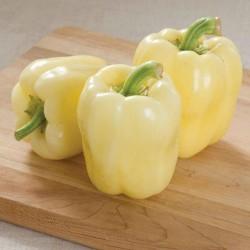 Graines de poivron blanc BELINDA  - 2