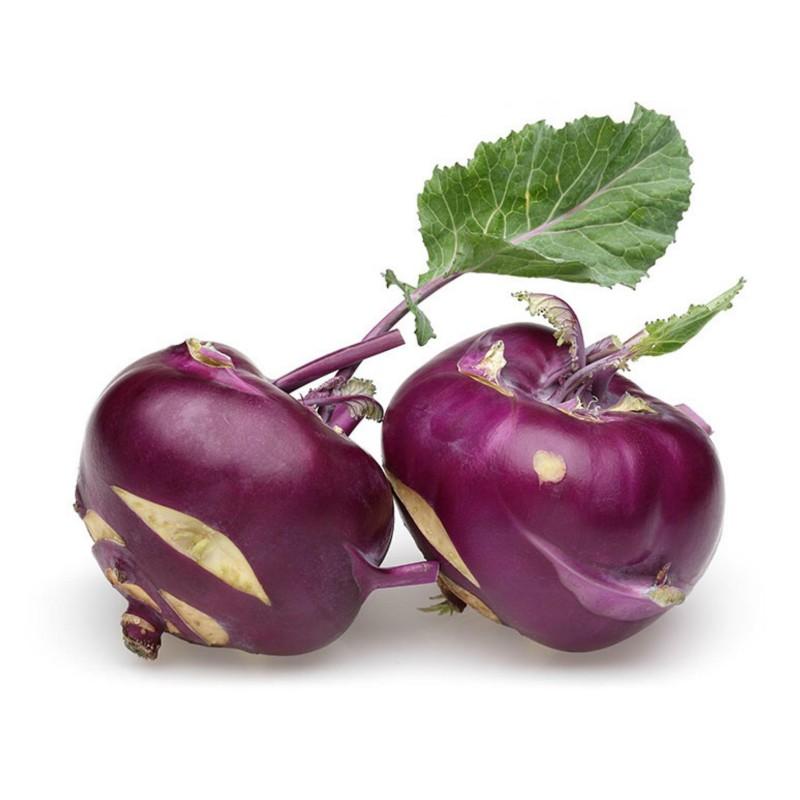 Semillas de colinabo Purple Vienna  - 4