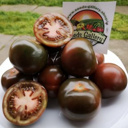 Graines Tomate Kumato - Tomate Noire Seeds Gallery - 3