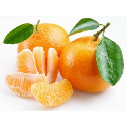 يوسفي - فاكهة بذور  - 5