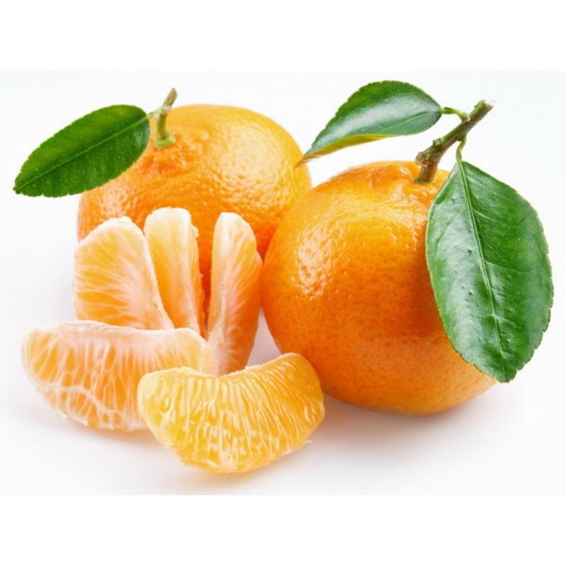 Σπόροι Μανταρίνι (Citrus reticulata)  - 5