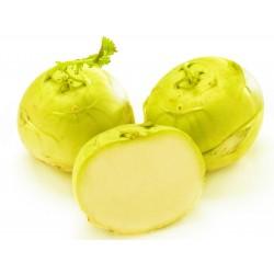 Graines de chou-rave jaune  - 1