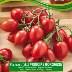Seme Paradajza PRINCIPE BORGHESE  - 1