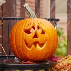 Halloween, Jack'O Lantern Pumpkin Seeds  - 1
