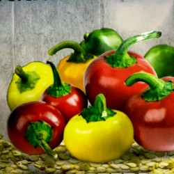 Rainbow Cherry Chili Seeds  - 2