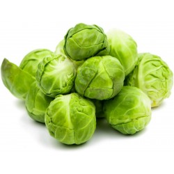 Siberian Early brussel sprouts seeds  - 3