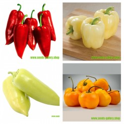 Serbian sweet pepper seeds collection 1  - 1