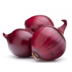 Лук Красный Брауншвейгский Семена  - 2