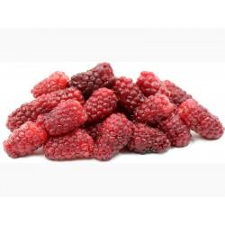 Semi di TAYBERRY gustosi frutti  - 3