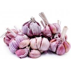 Spicchi d'aglio spagnoli Roja