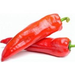 Kalorez Sweet Pepper Seeds
